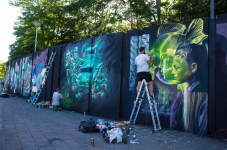 Murals by Telmo Miel & Derm at Step in the Arena 2015 in Eindhov