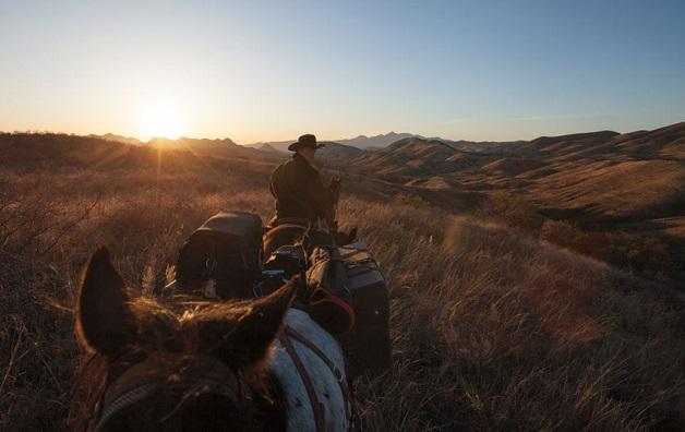 https://i1.wp.com/nomadesdigitais.com/wp-content/uploads/2015/12/cavalos-11.jpg