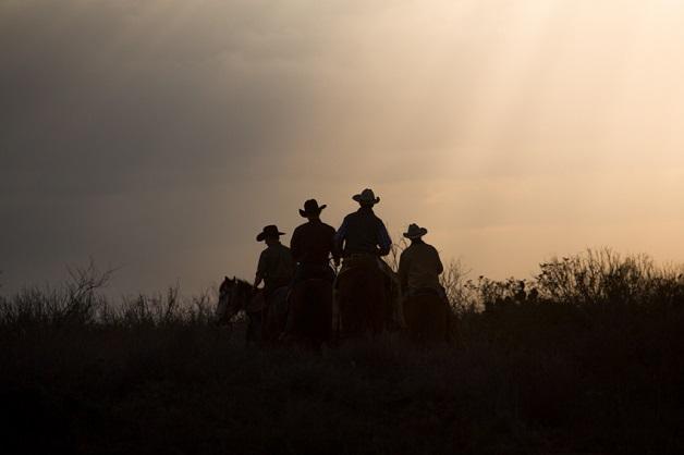 https://i1.wp.com/nomadesdigitais.com/wp-content/uploads/2015/12/cavalos-14.jpg