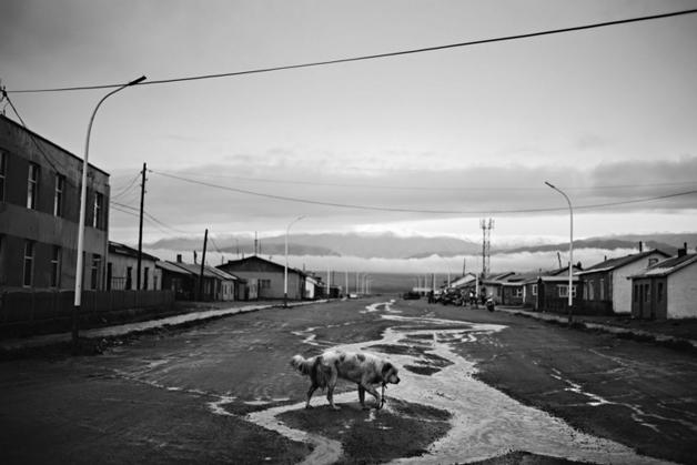 https://i1.wp.com/nomadesdigitais.com/wp-content/uploads/2016/02/Darvi-Mongolia.jpg