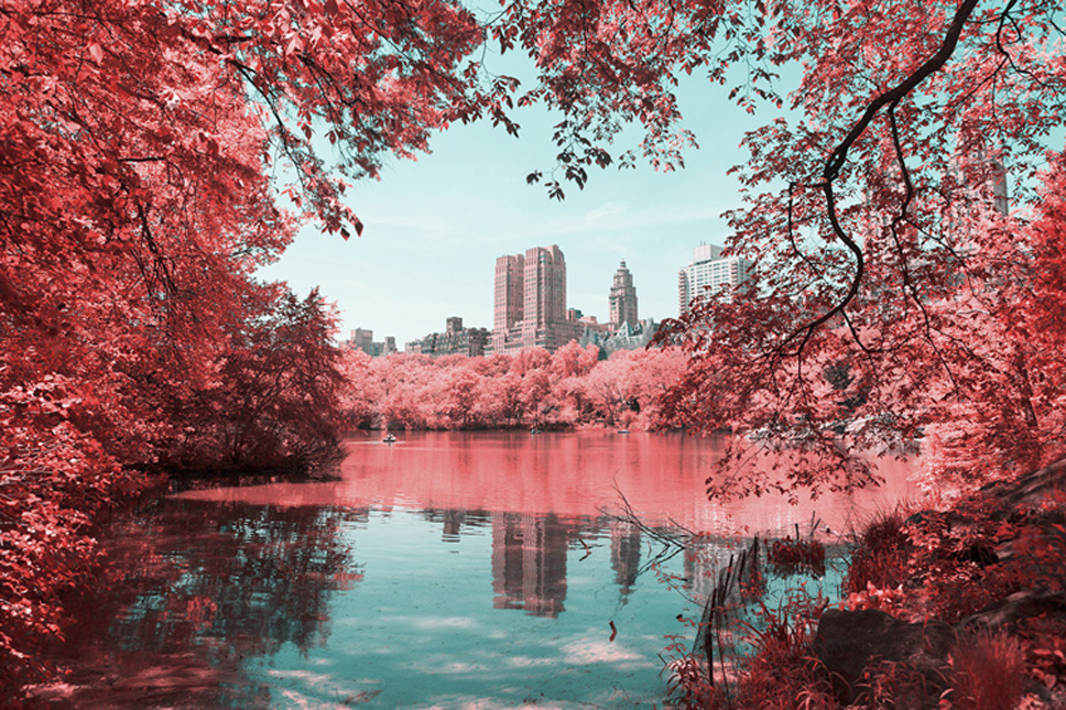 11_Central-Park-Infrared