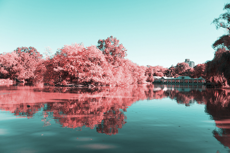 2_Central-Park-Infrared