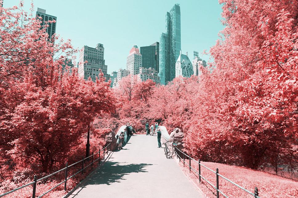 5_Central-Park-Infrared