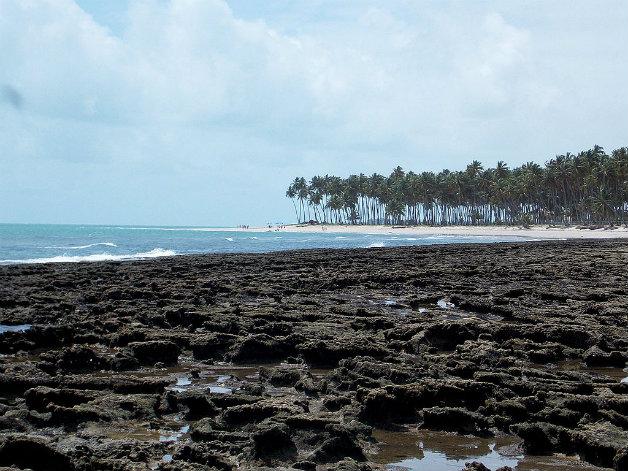 praia_dos_carneiros_-_tamandarepe