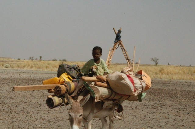 A young nomad on migration with his puppy.