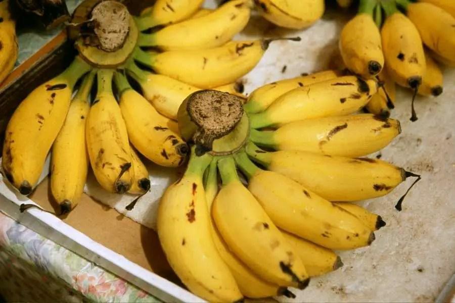 Banana Island Hanoi