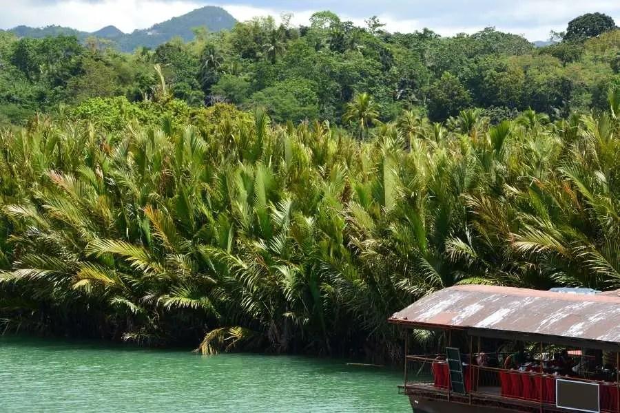 Travel Guide to Bohol - Loboc River Bohol Philippines