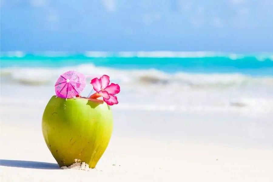 Coconut barbados beach