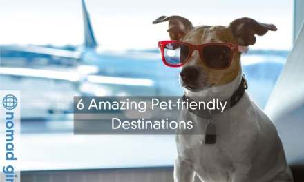 6 Amazing Pet-friendly Destinations Nomads Need To Travel To