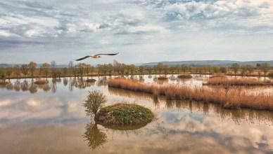 lacurile de la belin chira de balta