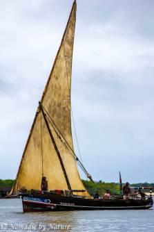 Dhow Sailing Past Manda Island