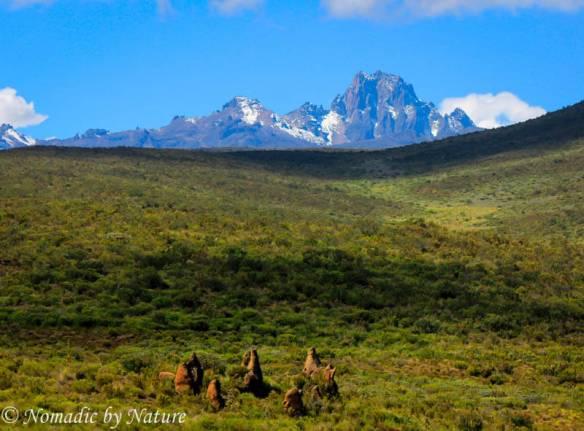 Rutundu, Mount Kenya