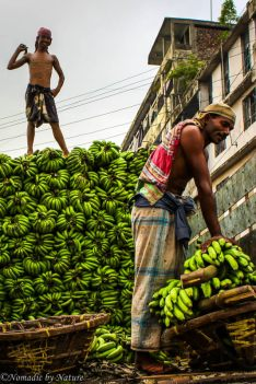 Banana Deliveries in Old Dhaka, Bangladesh