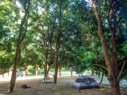 38 Day 68, Mangoes Campsite, Turmi, Omo Valley, Ethiopia