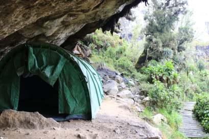 6 Day 9, Mutinda Camp, Rwenzori Mountains National Park, Uganda
