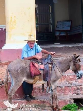 Donkey, Man, Cigar, Cuba