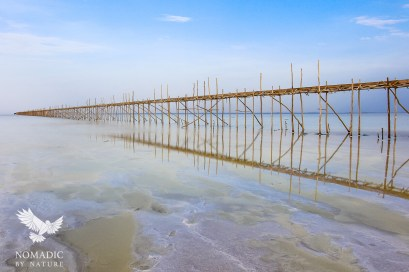 An Afar Bridge to Collect Salt when the Pan is Flooded, Danakil Depression, Ethiopia