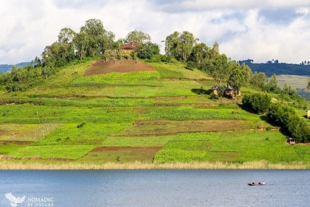 Terraced Island, Lake Bunyonyi, Uganda