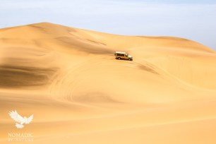 Driving in the Dunes on Desert Safari, Dorob National Park, Namibia