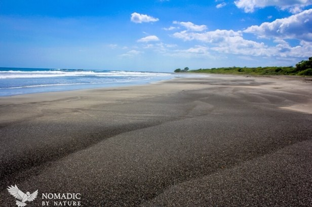 The Tidal Arcs of Black Sands, Playa Marbella, Costa Rica