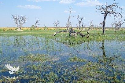 Paradise Pools, Okavango Delta, Botswana