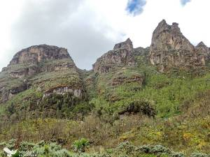 Mutinda's Look-out, Rwenzori Mountains National Park