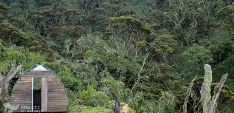 Samalira Camp, Rwenzori Mountains National Park