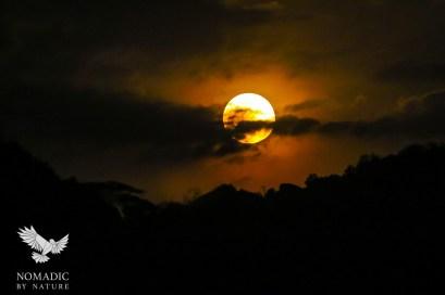 The Moon over the Serengeti, Serengeti National Park, Tanzania