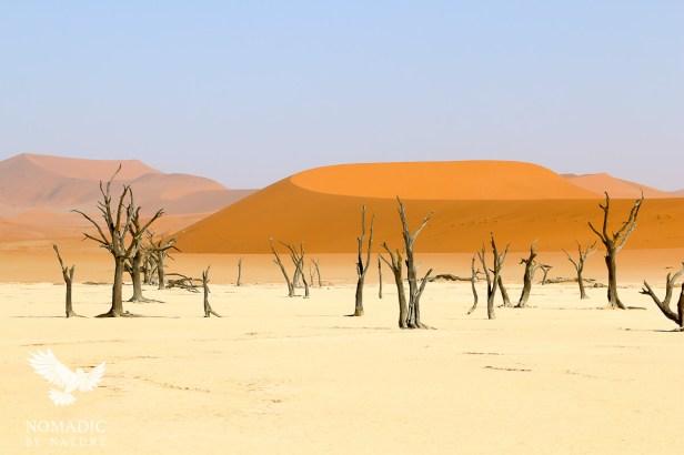 Dead Vlei, Sossusvlei, Namibia