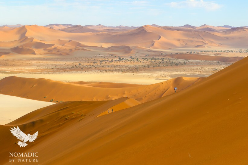Heading for the Summit of Big Daddy Dune, Sossusvlei, Namibia
