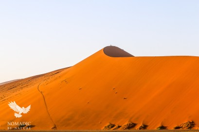 Dune 45 in the Dawn Light, Sossusvlei, Namibia