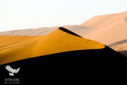 A Sidewinder S-shaped Sand Dune, Sossusvlei, Namibia