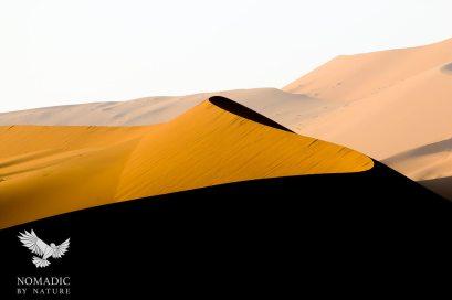 A Sidewinder S-shaped Sand Dune, Sossusvlei, Namibia