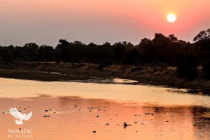The Glowing Orb Setting over Hippos, South Luangwa National Park, Zambia