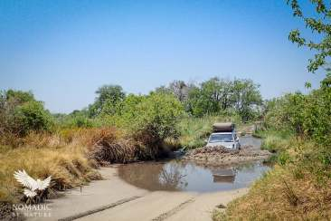 Travel Tips for Self-Driving Kasane to Maun