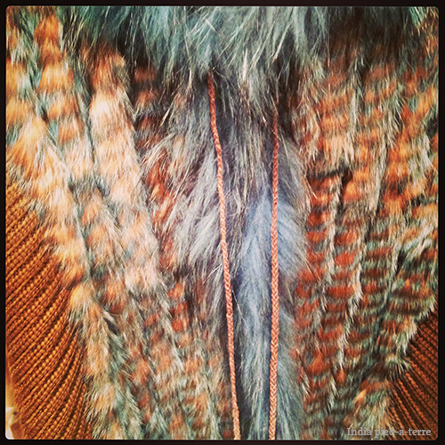 Brown-Fur-with-Turquoise-Tinge