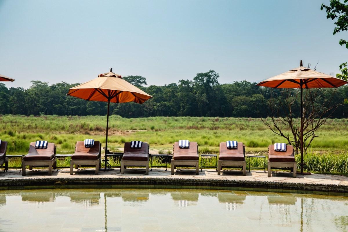 Pool at Barahi Jungle Lodge