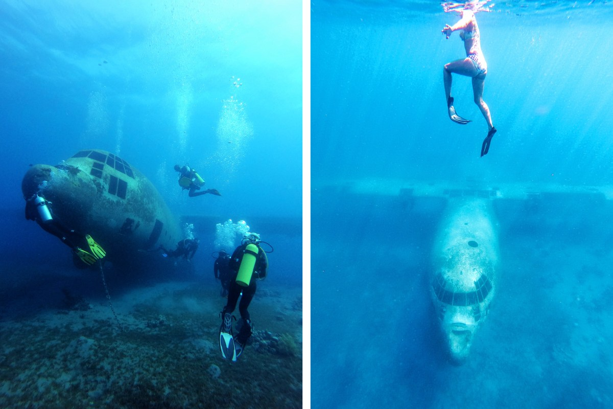 Nomadic Fare Diving in Aqaba, Jordan