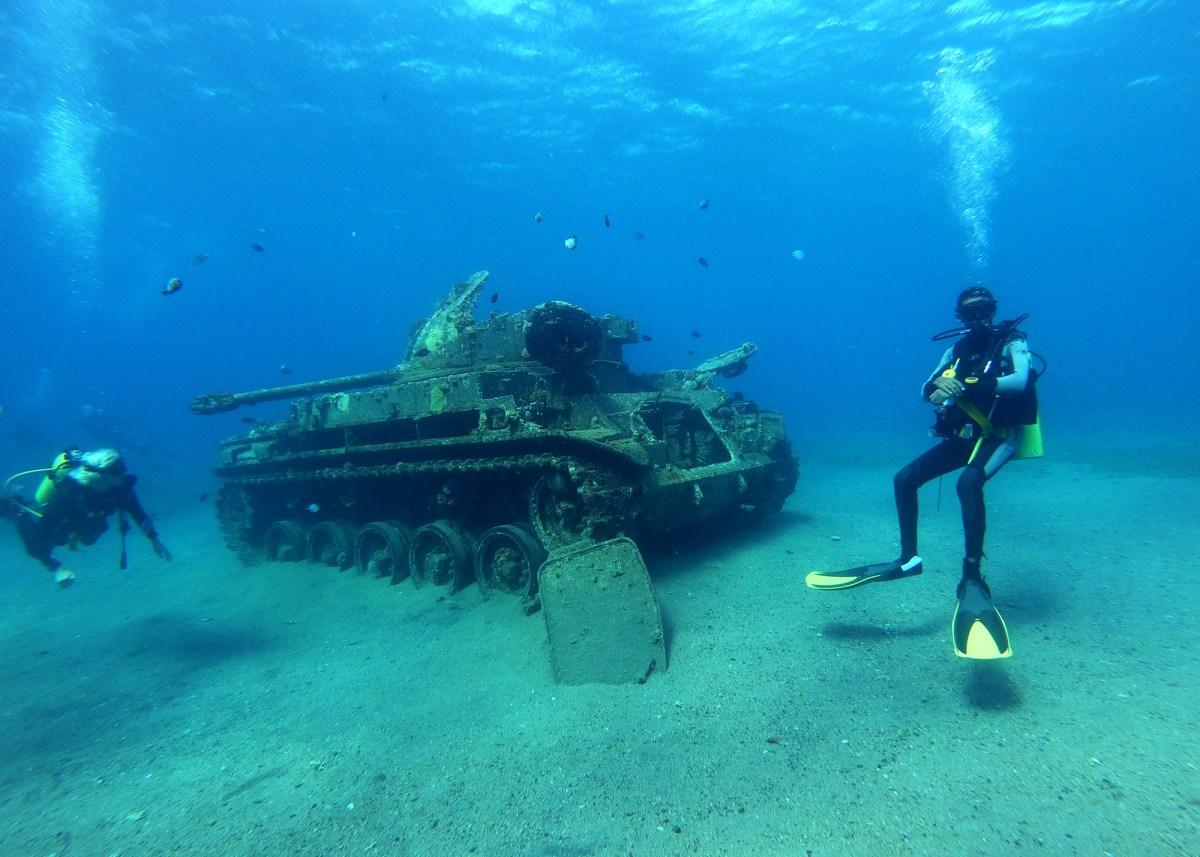 Nomadic Fare Diving in Aqaba