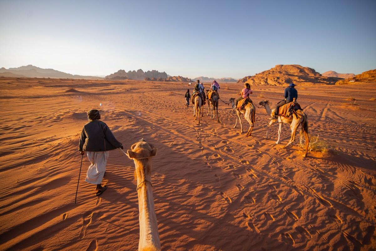 Camels and Desert Camp in Wadi Rum, Jordan