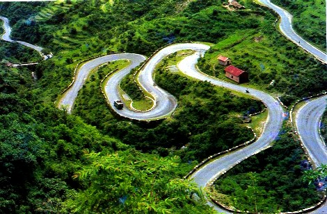 Twisting and Turning Amidst Nature's Gifts Near Mussorie