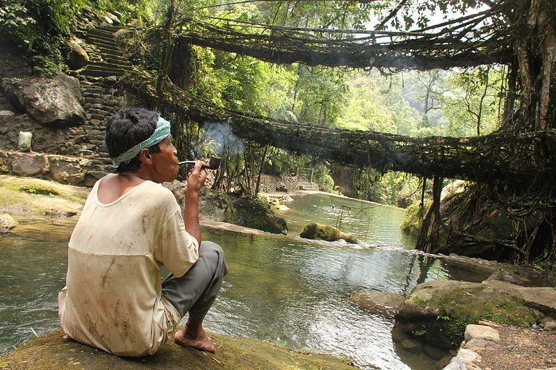 Living Root Bridge - Nongriat