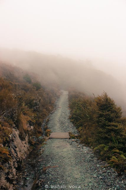 treking, milford sound