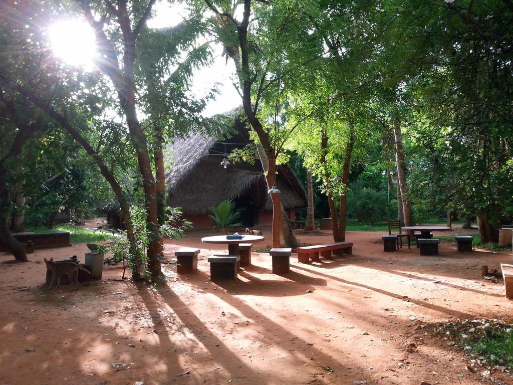Adishakti Theatre, Auroville