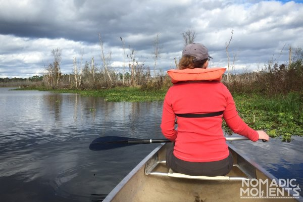 Canoeing the St. Johns River looking for manatees