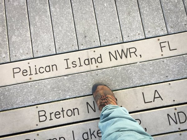A board along the Centennial Trail with the first National Wildlife Refuge, Pelican Island NWR, etched on it.