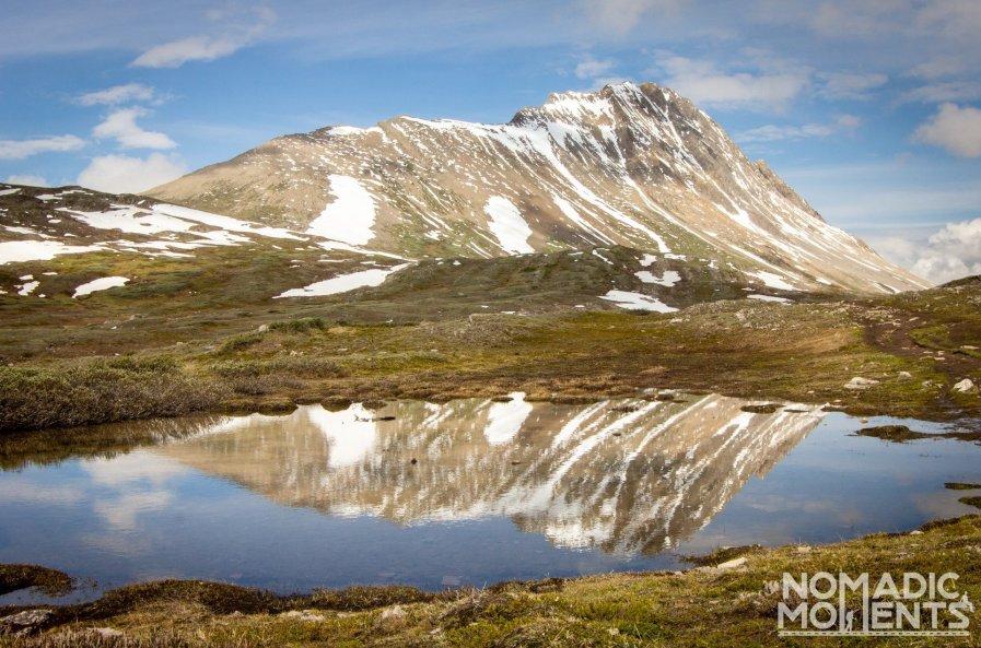 Wilcox Peak