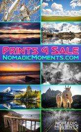 Prints-4-Sale