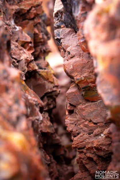 Petrified Fissure