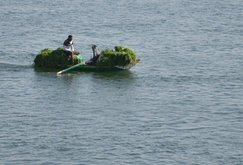 Cruising the Nile in Egypt